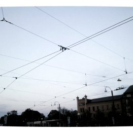 Tram lines above us across the city centre